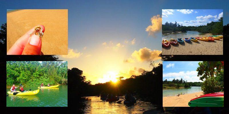 石垣島とどろき川カヌー