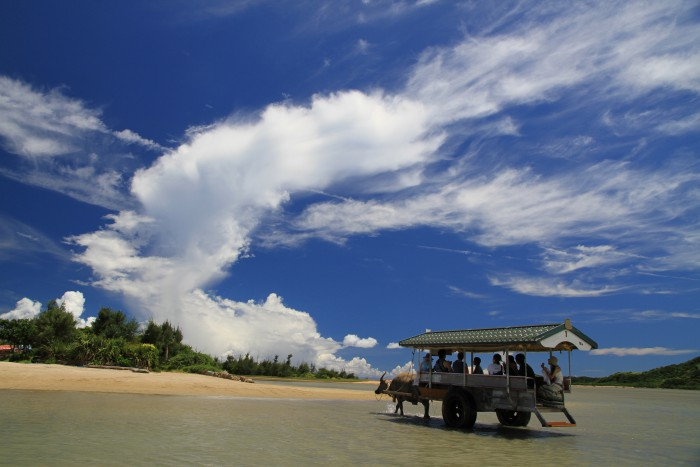由布島の水牛車観光