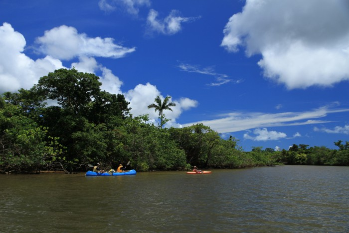西表島カヌー体験ツアー